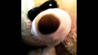 """Fred Bear 1 - """"Grizzly S%&t"""""""