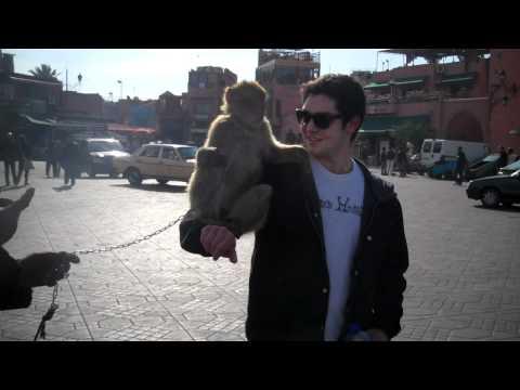 The Monkey with Evan