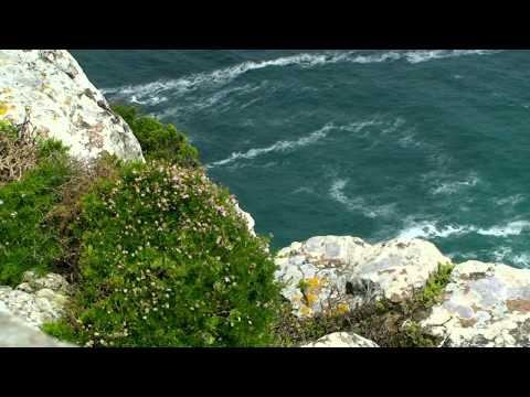 #Afrique-du-Sud diaporama des #paysages de la cote occidentale du #Cap