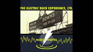 The Electric Duck Experience, Ltd. - Hi-Fi, Lo-IQ