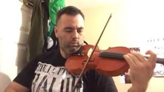 Shinsuke Nakamura Violin Cover