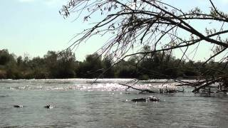 Relaxing sounds of water 2