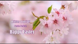 Hristos a Inviat! Paste Fericit! Happy Easter!