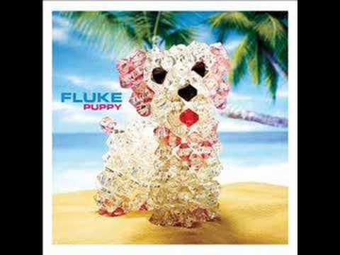 fluke-snapshot-directoire2105
