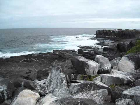 ¡Viva Galápagos!.wmv