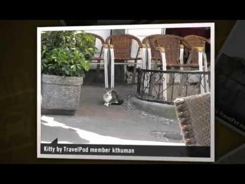 """""""Thank you Tourist Police"""" Kthuman's photos around Tangier, Morocco (fez tourism police address)"""