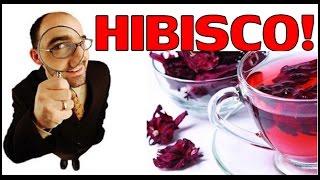 Benefícios do Chá de Hibisco para saúde e Malefícios - Hibiscus Sabdariffa
