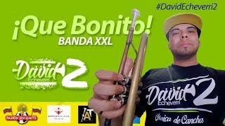 QUE BONITO   Trompeta [2017] #DavidEcheverri2