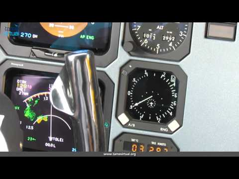 Flight Guayaquil Loja Ecuador ATR42-500 Tame – HD