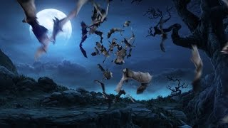 Green Screen Animals Flock of Bats - Footage PixelBoom