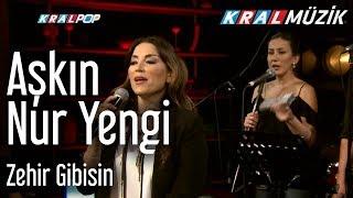Aşkın Nur Yengi - Zehir Gibisin (Kral Pop Akustik)