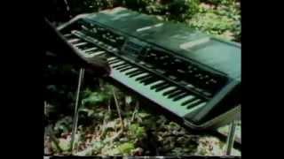 PolyMoog - 1975