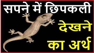 सपने में दिखे छिपकली तो जाने इसके शुभ और अशुभ फल Lizard Dream Meaning, interpretation in hindi