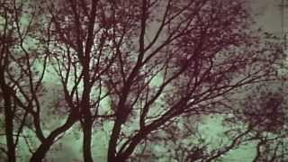 Nieves - Winter [Official Music Video]