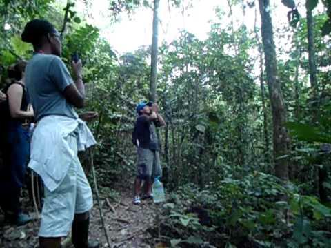 Amazônia Equatoriana – Equador