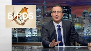 Birds: Last Week Tonight with John Oliver (Web Exclusive)