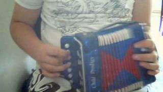 Mini accordeon / a saia da carolina