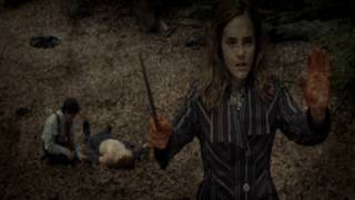 Harry Potter ~Entertain us~