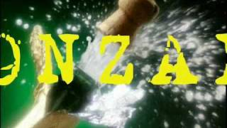 BONZAI-BY: HEN-A-CEE FEAT: C.O. THA BAD BLACK, JAH-RISTA AND SOUNDMASTER-T