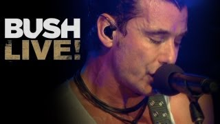 "BUSH NEW BLU-RAY & DVD! ""The Sound Of Winter"" Live at Roseland Theater from ""BUSH LIVE!"" (HD)"