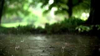 Spectacular Effects Of Rain In Slow Motion