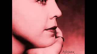Adriana Calcanhoto - Esquadros