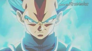 The super saiyan god 2 vegeta theme