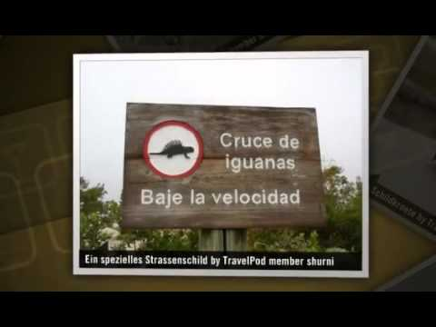 """Galapagos, Isla Isabela"" Shurni's photos around Isla Isabela, Ecuador (isla isabela galapagos)"