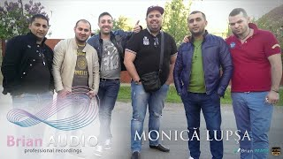 MONICA LUPSA - Hoata-i lumea asta rau (HIT 2014)