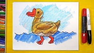 Как нарисовать Утку, Урок рисования для детей от 3 лет