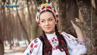 Vladuta Lupau - Pa drumu dintre hotare