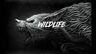 "Dancehall Riddim Instrumental 2018  ''Wildlife Riddim"" Masicka ✘ Tommy Lee Type beat BY.Dan Sky"