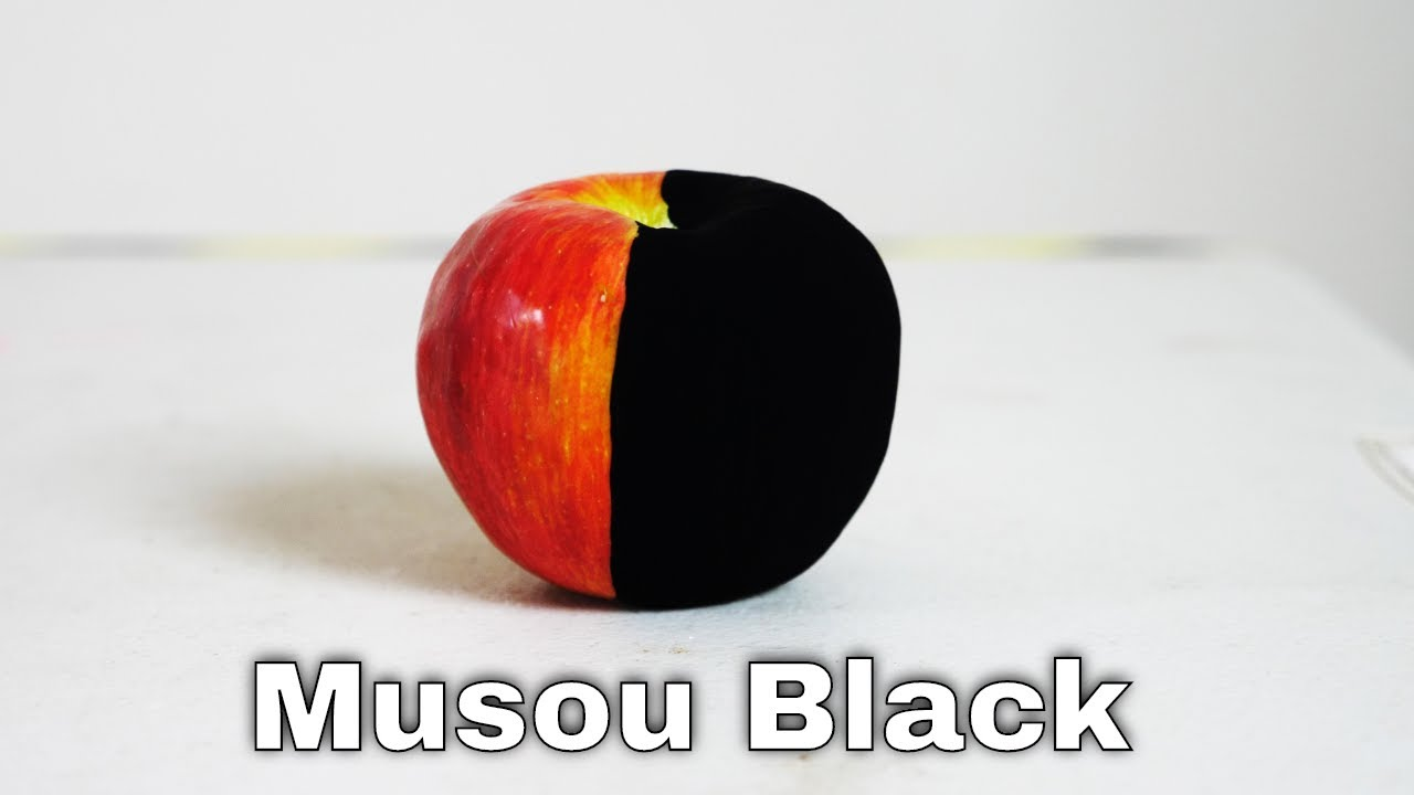 Musou Black—The World's Blackest Paint