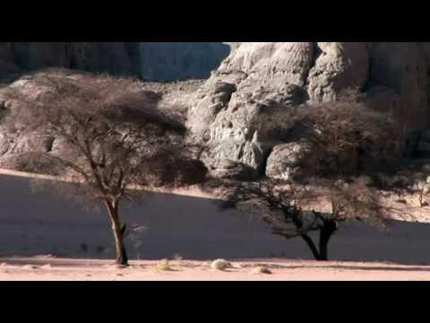 ALGERIA. SAND. SAHARA. DESERT. TINARIWAN. ALGERIE
