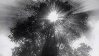 Distant Dreams - Nitin Sawhney feat. Roxanne Tataei