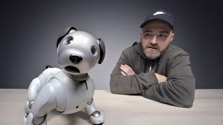 The $3000 Sony Aibo Robot Dog width=