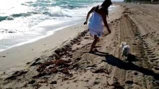 Lucas en playa