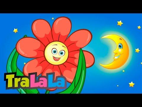 Mica floare - Cântece pentru copii