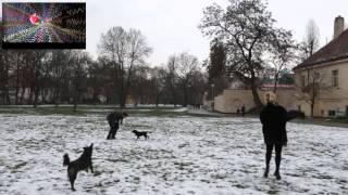 TEŠBA v Praze (feat. DŽUMELEC) + CHVEJ MY WAY pesnička s textom