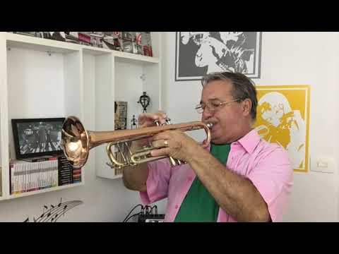 Historias Para Ninar Gente Grande de Aldinho Trompete Letra y Video