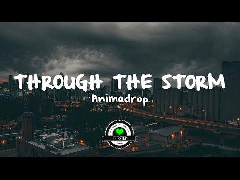 Animadrop - Through the Storm