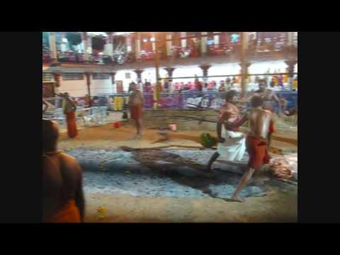 Best of Firewalking / Theemithi @ Singapore Sri Mariamman Temple