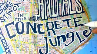 Concrete Jungle - Lyric Video