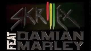Skrillex ft Damian Marley   Make It Bun Dem HQ