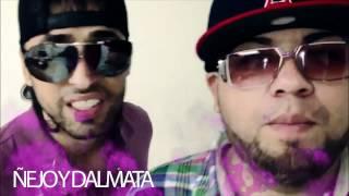 COMERCIAL LOVUMBA - ÑEJO Y DALMATA