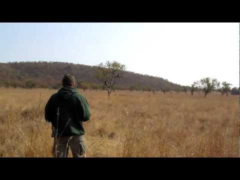 South Africa 2010 – Gettin close to baboons