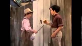 Tom Sawyer Fence