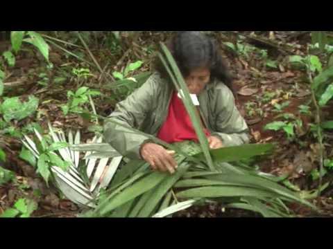 Lasseman på nya äventyr i Ecuador