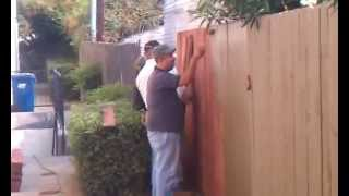 Fence Painting - JCF Constructions
