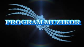 Program Muzikor